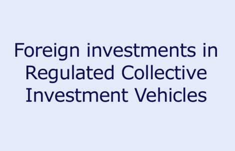 Foreign investments in Regulated Collective Investment Vehicles